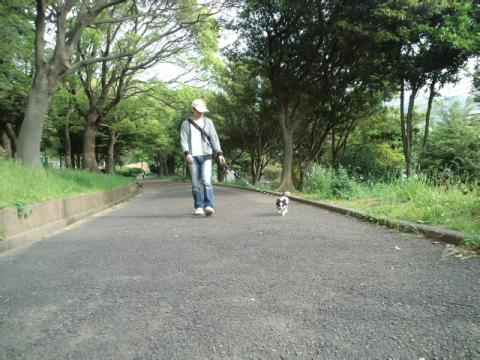 PAP_09.jpg