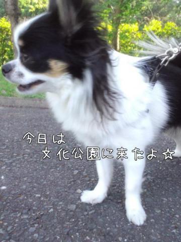 Zw8J_EIb.jpg
