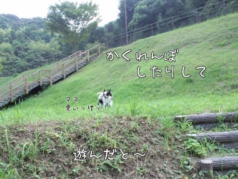 k0_wo.jpg