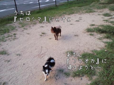 m8hUm.jpg