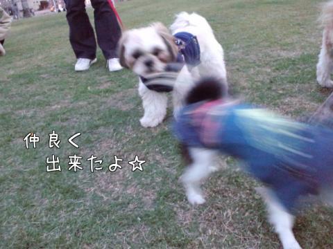 oQ069.jpg