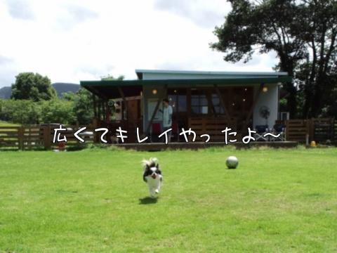 oakM4VG0.jpg
