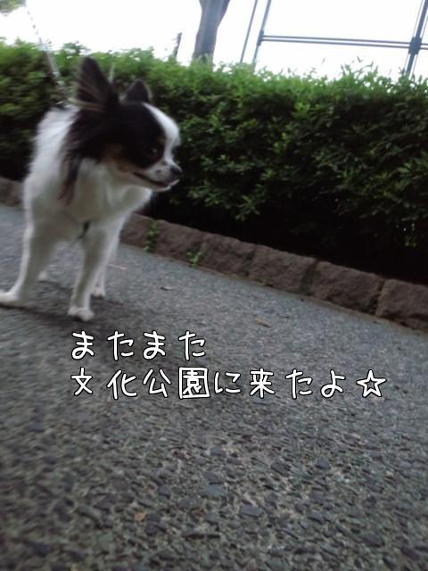 orAc7iFJ.jpg