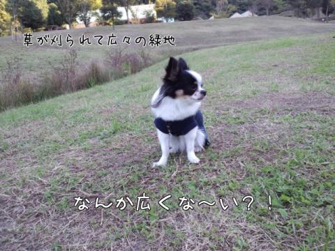 r_L4A.jpg