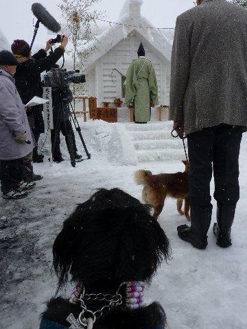 愛犬祈祷祭