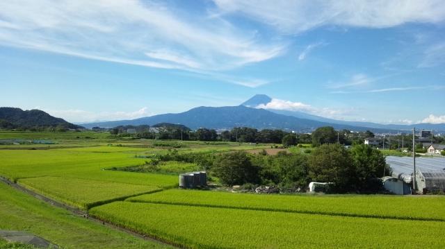 Mt.Fuji Panolama