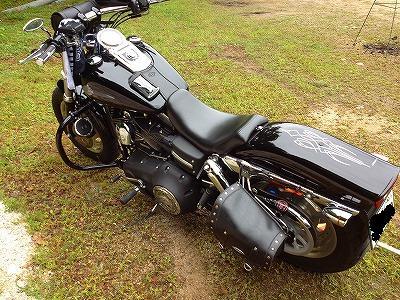 s-ヒバゴン2012 026