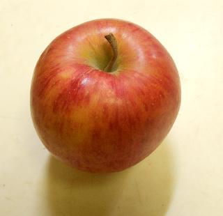 クリームリンゴ1