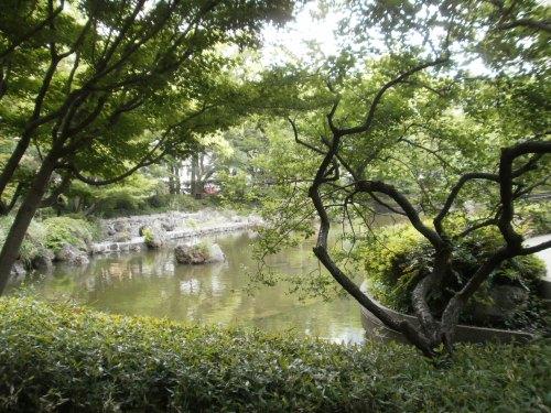 早朝の横浜公園5