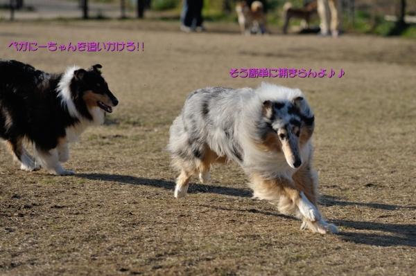 2014011102_convert_20140112230605.jpg