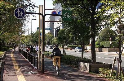 市街の自転車道