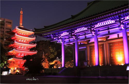 東長寺本堂&五重塔