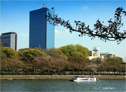 旧淀川を望む