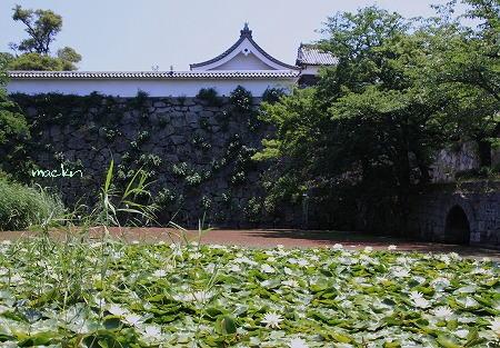 福岡城址・大手門潮見櫓