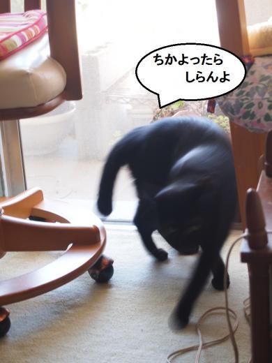 きなっちゃん社長&ささっちゃん部長