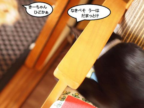 雲丹専務&きなっちゃん社長