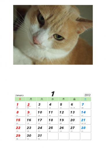 雲丹専務カレンダー