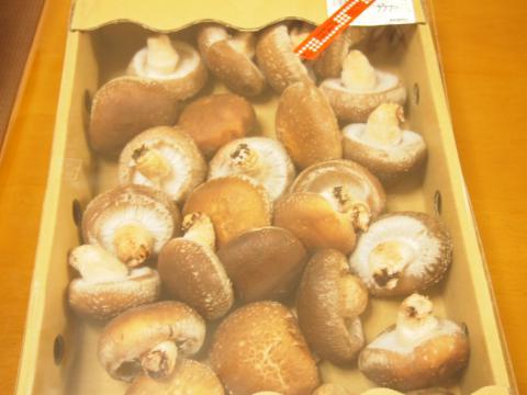 箱で買った椎茸