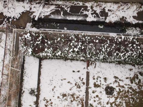 マンションの敷地内の雪