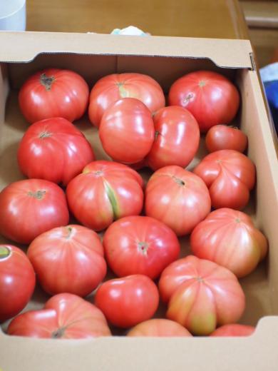 トマト 箱で700円