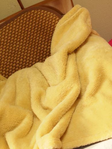 毛布の中のきなっちゃん社長