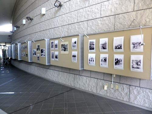 馬毛島写真展開催、屋久島