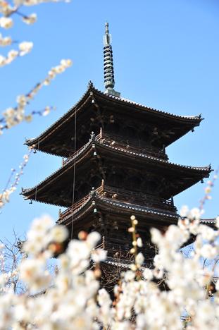 備中国分寺3