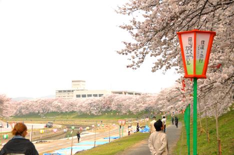 0410旭川河川敷5