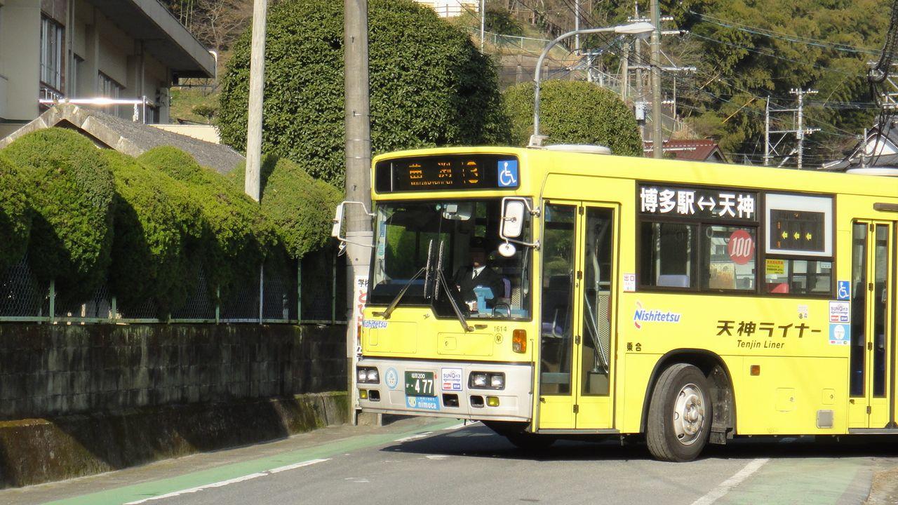 DSC01545b.jpg