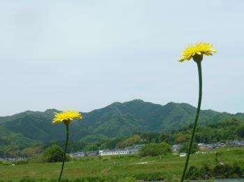 blog 2012 5 15 6