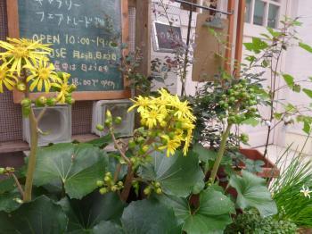 blog 2012 10  10 1
