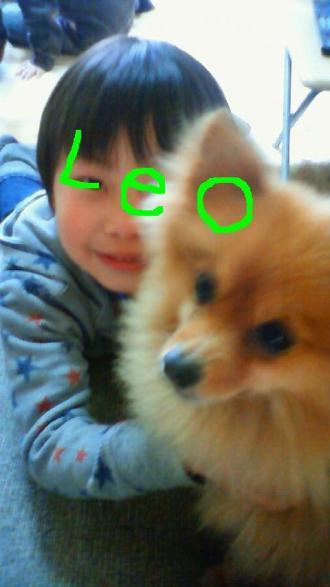 leo_convert_20100330170701.jpg