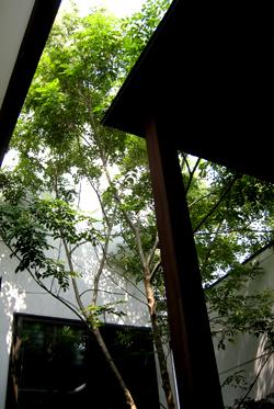 飾磨の家風呂庭01