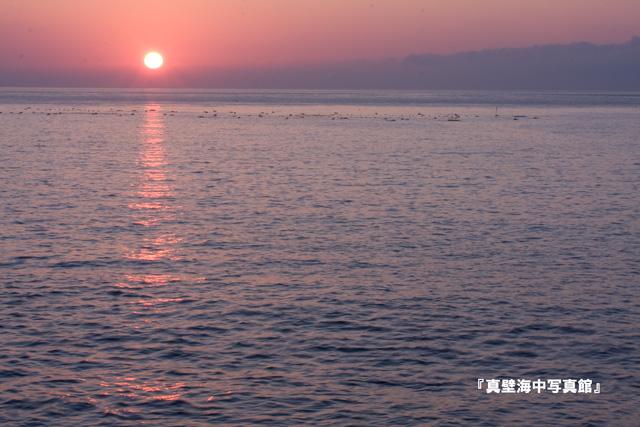 05-3★朝日100911_0-12