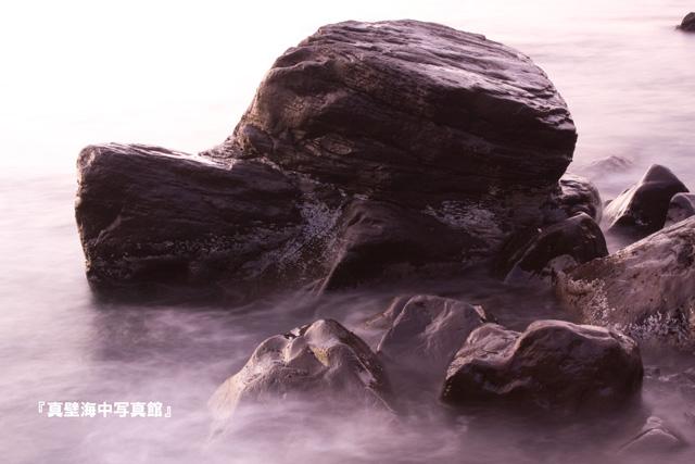 06-1★雲海それともワンちゃん