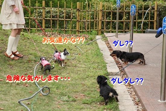 まかぽて旅行♪ (5)