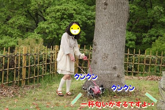 まかぽて旅行♪ (3)