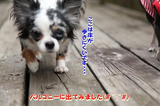 コテージに到着♪ (4)