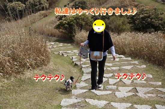 お出かけ編♪ (5)