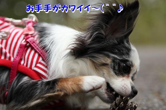 最終日♪ (6)