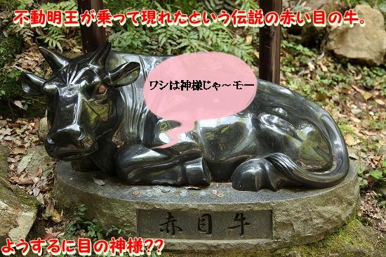 最終日♪ (23)