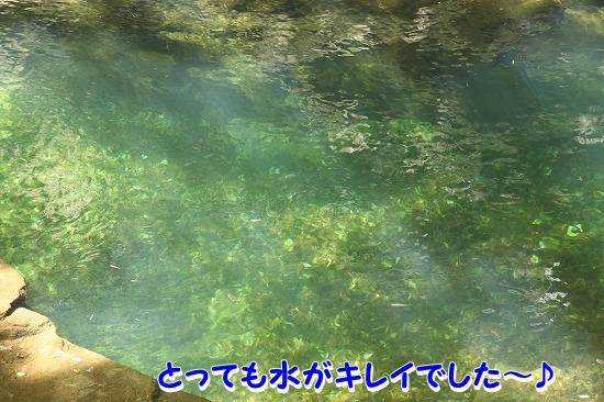 最終日♪ (20)
