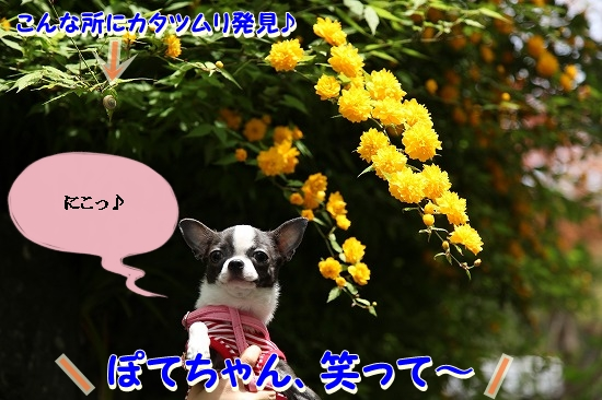 最終日♪ (30)