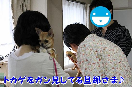 たろ&さちちゃん♪ (6)