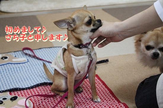 たろ&さちちゃん♪ (4)
