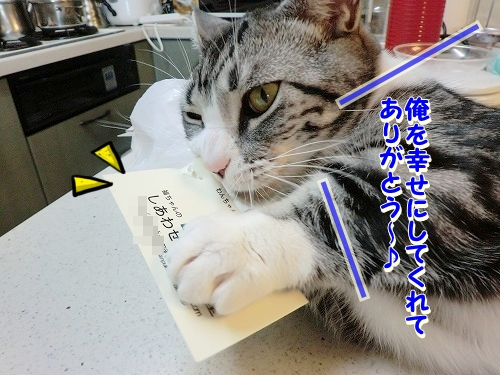 花円&キャロル♪ (12)