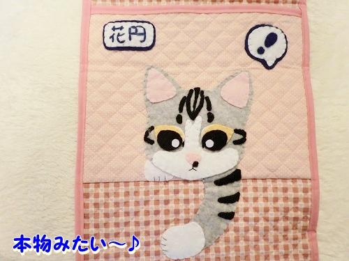 花円&キャロル♪ (9)