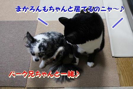みんな元気♪ (2)
