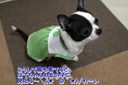 かわいい夏服♪ (6)
