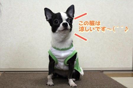 かわいい夏服♪ (1)